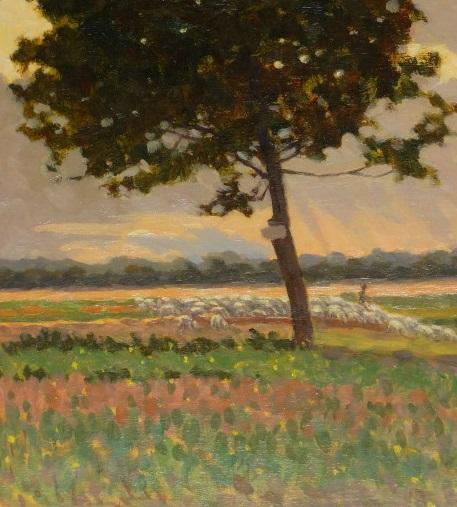 troupeau en Provence